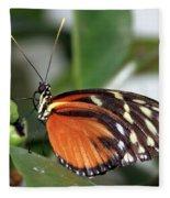 Key West Butterfly 2 Fleece Blanket