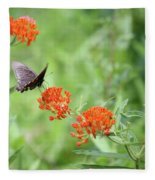 Butterfly A L'orange Fleece Blanket