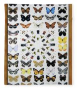 Butterfly Collection Fleece Blanket