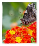 Butterfly Hanging Out On Wildflowers Fleece Blanket