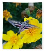 Butterfly Moth Fleece Blanket