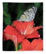 Butterfly On A Lily Fleece Blanket