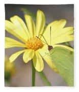 Butterfly On Daisy Fleece Blanket
