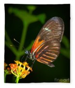 Butterfly On Orange Bloom Fleece Blanket