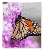 Butterfly On Phlox Flowers Fleece Blanket