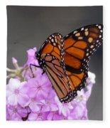 Butterfly On Phlox Fleece Blanket