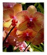 Butterfly Orchids Fleece Blanket