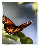 Butterfly -  Soaking Up The Sun Fleece Blanket