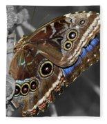 Butterfly Spot Color 1 Fleece Blanket