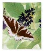 Butterfly - Swallowtail - Photopower 140 Fleece Blanket