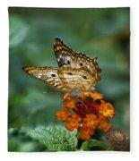 Butterfly Wings Of Sun Light Fleece Blanket