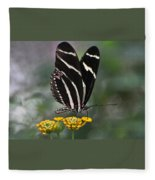 Butterly Fleece Blanket
