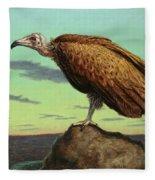 Buzzard Rock Fleece Blanket