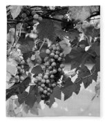Bw Hanging Thompson Grapes Sultana Poster Look Fleece Blanket