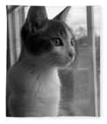 Bw The Inquisitive Kitty Jackson Fleece Blanket