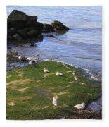 By The Shoreline Fleece Blanket