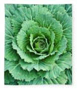 Cabbage Leaves Fleece Blanket