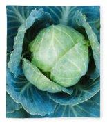 Cabbage Painterly Fleece Blanket