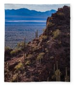 Cacti Covered Rock At Tucson Mountains Fleece Blanket