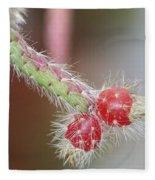 Cactus Berries Fleece Blanket