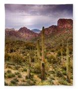 Cactus Canyon  Fleece Blanket