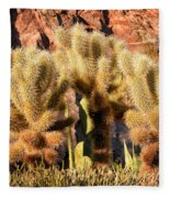 Cactus Garden Fleece Blanket