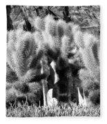 Cactus In Bw Fleece Blanket