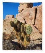 Cactus In Hidden Valley Fleece Blanket