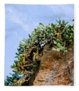 Cactus On A Cliff Fleece Blanket