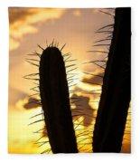 Cactus Sunset Fleece Blanket