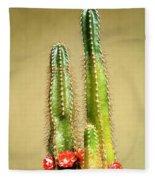 Cactus Towers Fleece Blanket