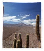 Cactus With The Andes Mountains Fleece Blanket
