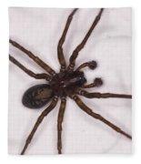 Caffeine Crazed Arachnoid Fleece Blanket