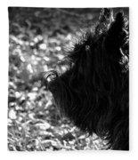 Cairn Head Study Fleece Blanket