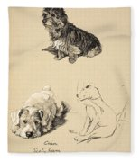 Cairn, Sealyham And Bull Terrier, 1930 Fleece Blanket