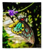 Cairns Birdwing Fleece Blanket