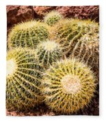 California Barrel Cactus Fleece Blanket