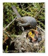 California Gnatcatcher Feeding Young Fleece Blanket