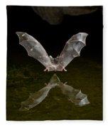 California Long-nosed Bat Flying Away Fleece Blanket