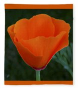 California Poppy Spectacular Fleece Blanket