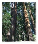 California Redwood Fleece Blanket