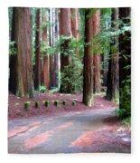 California Redwoods 3 Fleece Blanket