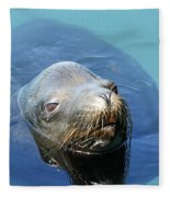 California Sea Life Fleece Blanket