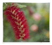 Callistemon Citrinus - Crimson Bottlebrush Fleece Blanket
