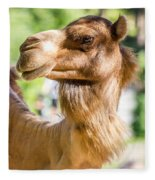 Camel Portrait Fleece Blanket