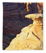 Camel Rock Fleece Blanket