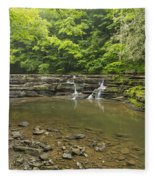 Campbell Falls 6 Fleece Blanket