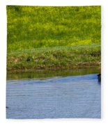 Canada Geese And Goslings Fleece Blanket