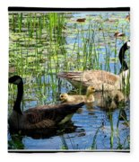 Canada Geese On Lily Pond At Reinstein Woods Fleece Blanket