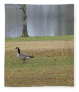 Canadian Geese Tourists Fleece Blanket